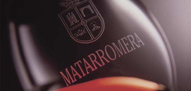Grupo Matarromera
