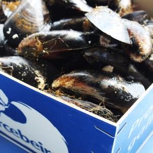 O Percebeiro, la calidad e identidad de lo mejor del mar gallego | Luxury Spain