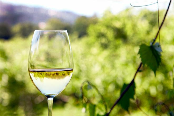 """Caserío de Dueñas Superior """"En Rama"""", un sofisticado blanco con gran intensidad aromática, carácter y alma   Luxury Spain"""