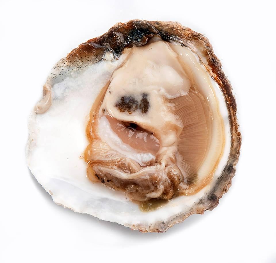 OPercebeiro-ostras-LuxurySpain